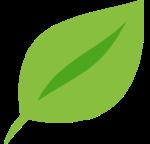 icona-purezza-foglia